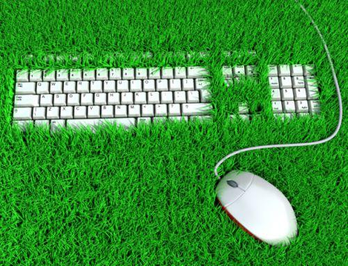 4 maneras en que las pequeñas empresas pueden respetar al medio ambiente